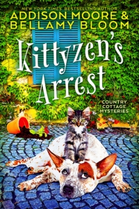 Kittizens-Arrest-Kindle